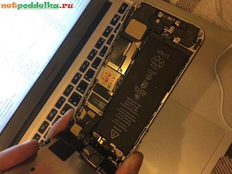 Осмотр внутренностей iPhone