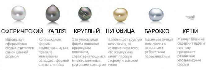 Описание разновидностей форм