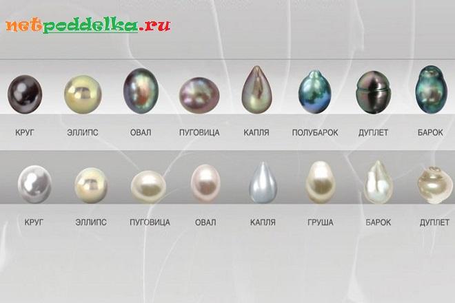 Разнообразие форм